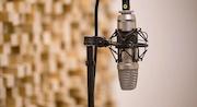 Voiceover Camera Acting Institute